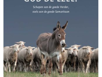 Be a donkey for the Good Samaritan