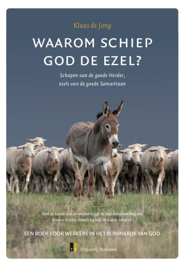 Be a donkey for the Good Samaritan